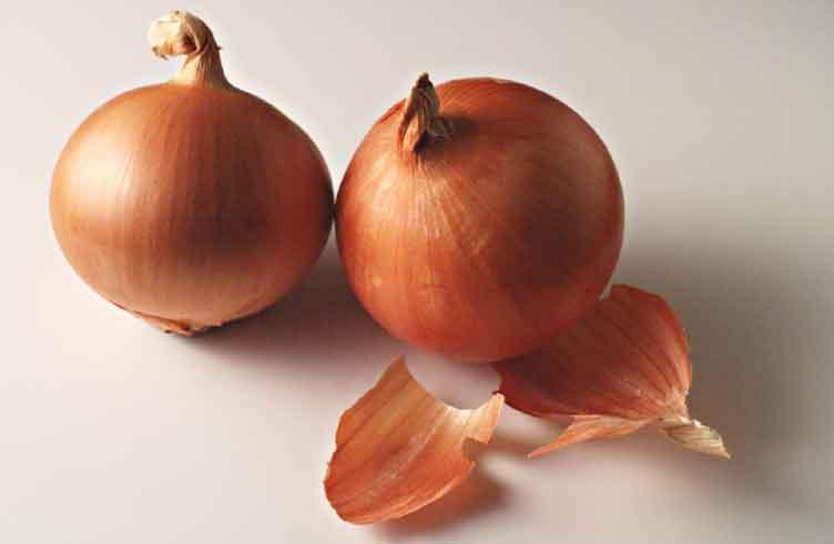 15 aliments qui n ont pas besoin d tre r frig r s - Quand semer les oignons ...